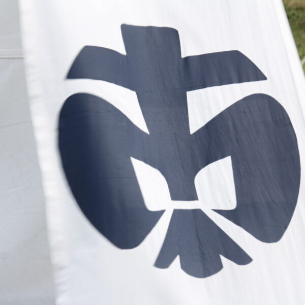 DPSG-Lilie auf Banner